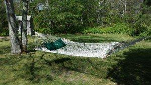 grace hammock